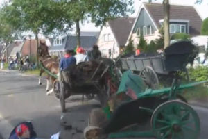 Horse Carriage Crash
