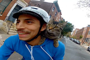 Bike Guy With A Cat