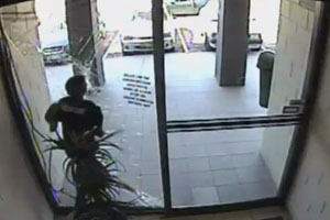 Stupid Robbery Fail
