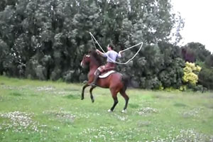 Horse Jumps A Rope