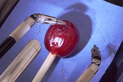 Robot That Can Stitche a Grape Back Together