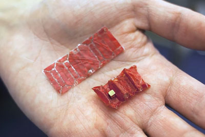 Ingestible Origami Robot Can Patch Wounds And Remove Objects From Inside Of Your Body