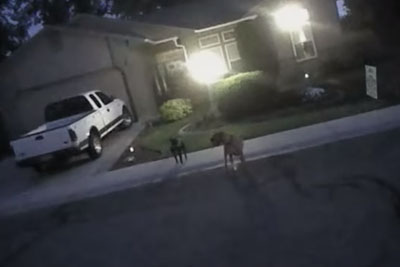 Dogs Charge Police Officer From Meridian, But He Knows What To Do