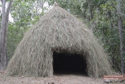 This Is How You Make A Grass Hut In The Nature