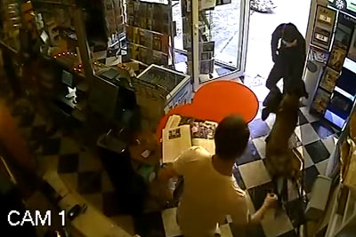 Hero Dog Risks Its Life As It Scares Off Robber With Gun Who Targets Shop
