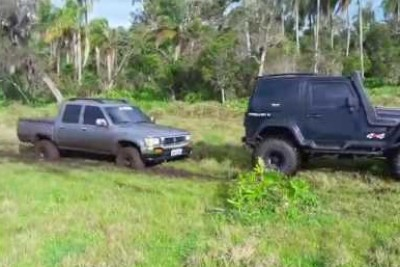 You Don't Want To Get Stuck In The Mud Near Friends Like This