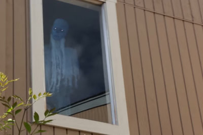 This Creepy Following Window Ghost Is The Best Decoration For Halloween