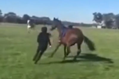 Horse Kicks Abusive Trainer In The Face