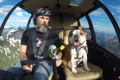 Owner Takes His Bentley The Bulldog On A Best Adventure With Helicopter