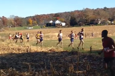Deer Hits People During A Cross Country Race