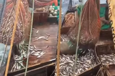 Russian Fishermen Surprised By Somehting Unexpected In Fishing Net