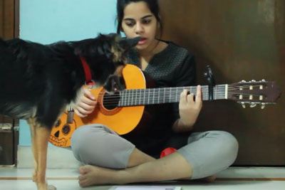 Dog Ruins Cover On Adele's Song Make You Feel My Love