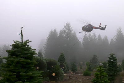 A Helicopter Is Hands Down The Best Way To Transport Christmas Trees