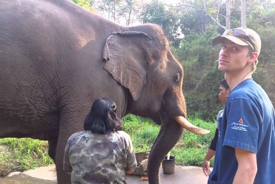 Rescued Elephant Shows The Gratitude To His Saviors With Unusual Roaring