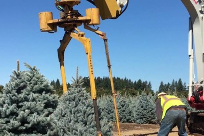 Have You Seen How They Tie Christmas Trees With A Help Of This Tree Tyer?