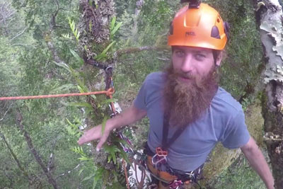 This Is How Work Of Lumberjack Looks Like From His Perspective