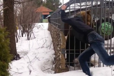 Russian Man Tries To Pet A Bear, Then Bear Grabs Him