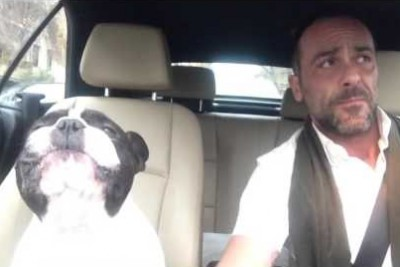 Their Favorite Song Comes On The Radio. Now Watch The Bulldog Sing With His Owner