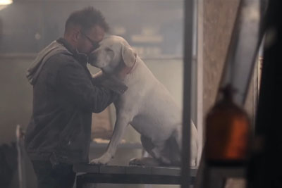 Touching Film Shows What Life Would Be Like If Dogs Could Talk - This Really Hits Your Feelings