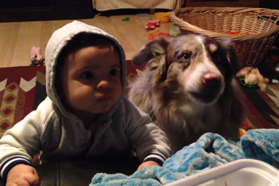 Mom Offers Baby A Treat If He Says 'Mama' But Dog Says It First