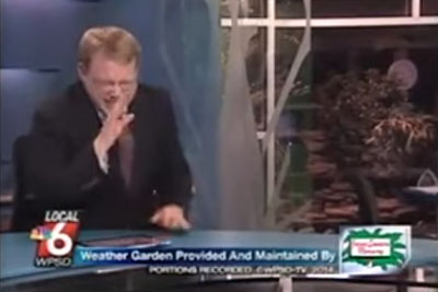 News Anchor Reporter Looses Control Laughs At Name Of A Cute Pig
