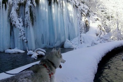 Croatia National Park Plitvice May Be The Most Beautiful Thing You Will See In Winter