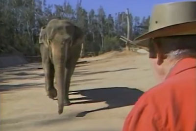 He Meets An Elephant Again After 15 Years Of Separation. This Is What Happened!