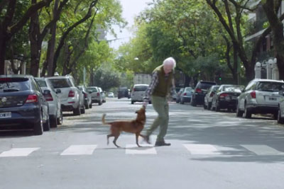 Prepare Your Tissues: This Video About An Old Man And His Dog Will Break Your Heart!