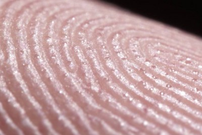 Macro Close-Up Of Fingers Sweating Is So Weird We're Really Having Trouble Believing It's Real