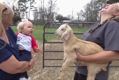 "Mom And Baby Girl Walk Up To Goat, Their ""Conversation"" Went Viral Overnight"