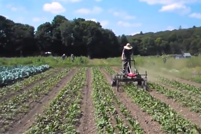 Farmer Builds A Custom Machine To Help Him Plowing Fields