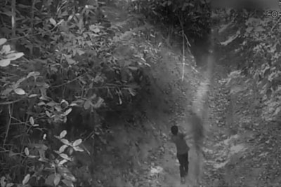 Ghost Attack Caught On CCTV In Forest. Is This Real?