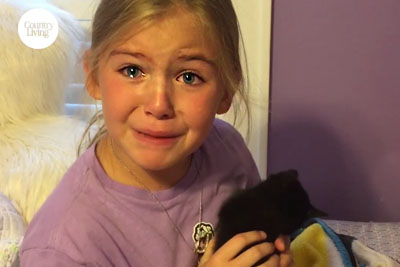 This Little Girl's Reaction To A New Kitten Will Melt Your Heart