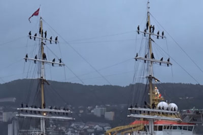 Sailers Sing As Their Ship Returns To Norway After A Three Month Journey Across The Atlantic