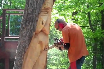 Man Creates Something Special Out Of Log, Leaving All The Neighbours Jealous