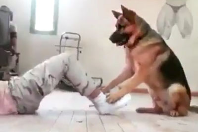 This Video Proves German Shepherds Are The Best Gym Partners