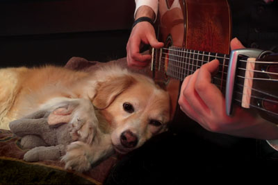 This Dog's Reaction To Green Day Proves Music Heals The Soul Of All Creatures