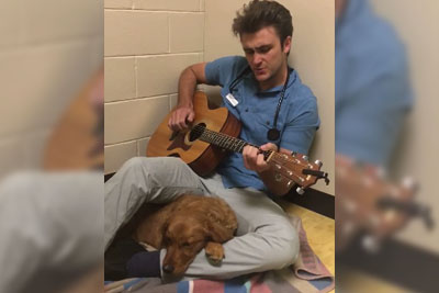 Veterinarian Plays A Special Song To A Dog Before Surgery, Footage Is Now Going Viral