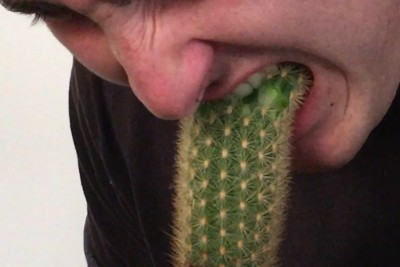 Crazy Youtuber Eats A Whole Cactus Infront Of Camera