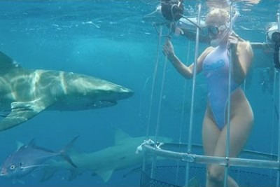 Model Is Attacked And Bitten By A Shark Off Florida Coast During An Underwater Photo Shoot