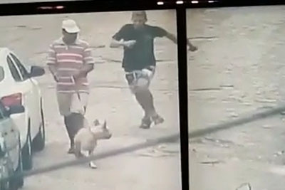 Thief Gets Busted By Random Dog While Police Is After Him