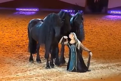 She Stands By Her Horses, Then No One Could Take Their Eyes Off Her Next Move