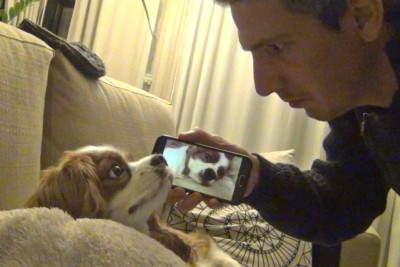 He Had Enough Of Dog's Snoring, Then He Made Everyone Laugh With Next Move