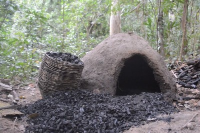Guy Shows Us How To Make Reusable Charcoal In The Middle Of The Woods