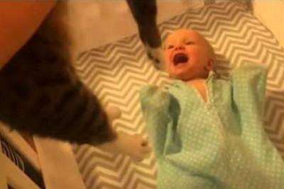 Baby Can't Contain Her Excitement When She Sees A Cat