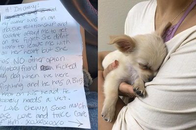 Puppy Was Abandoned In Las Vegas Airport With This Heartbreaking Letter Next To Her