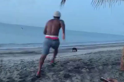 Man Who Tries To Kick Stray Dog At Beach Gets A Dose Of Karma In Return