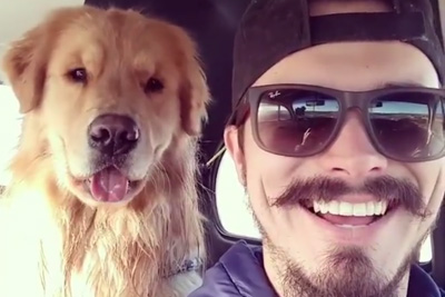 Dog Copies His Owner's Expressions, Steals Whole Attention