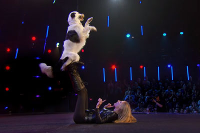 Dog And Trainer Raise Judges On Their Feet With This Adorable Routine