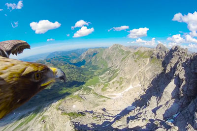 Stunning Eagle's Point Of View Of The Alps Like Never Seen Before
